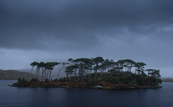 Pine Tree Island, Connemara, Ireland 1