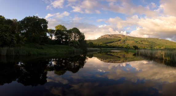 River Roe Reflections